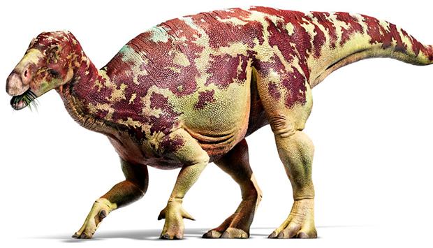 iguanodon-03