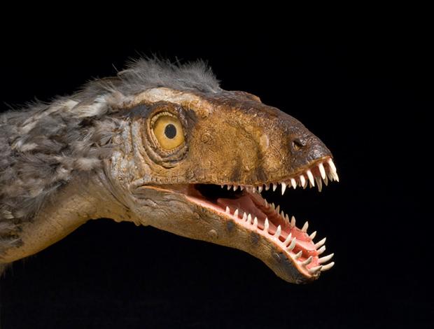 Masiakasaurus-Sean-Murtha-620px